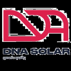 DNA Solar