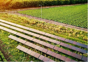 Агровольтаїка. Ідеальна комбінація енергетики та фермерства?